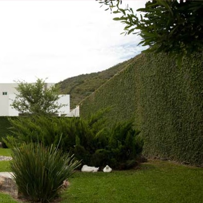 Refuerzo de Muro, Sect. Covadonga